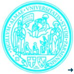 CLOSED Post-doc position funded by SINE2020 offered at the University of Parma
